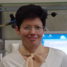 Dieses Bild zeigt  Inna Kharitonova